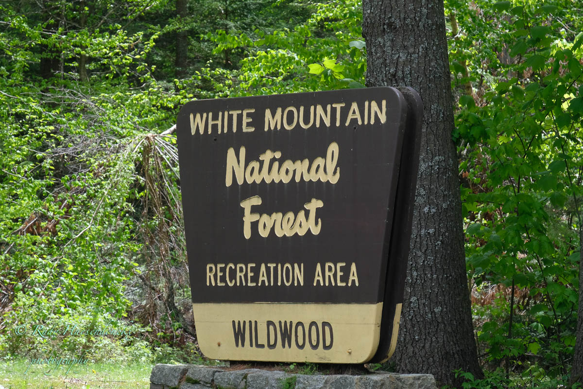 Van Lake Placid naar White Mountains